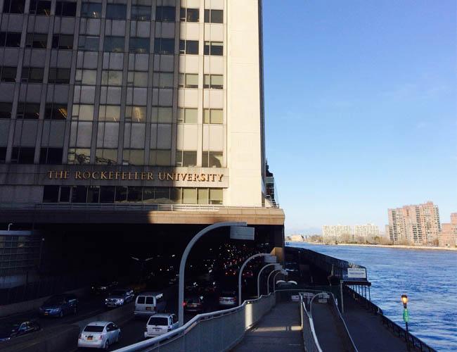 Rockefeller University overlooking the East River.