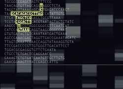 Modernising measles surveillance