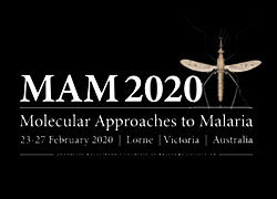 Molecular Approaches to Malaria Conference