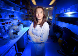 Mapping the immune response to COVID-19