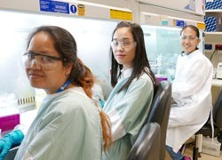 WHO influenza centre shares expertise with scientists from the Asia and Pacific region