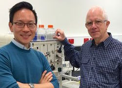 Multi-tasking flu vaccine could provide better protection against outbreaks