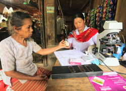 Malaria in the Asia Pacific: A Complex But Solvable Problem