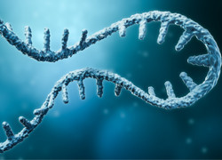 Renowned scientists lead mRNA Victoria Advisory Group